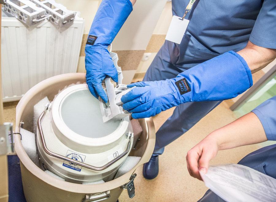 KRIO Intézet 2004. óta végzi köldökzsinórvér eredetű őssejtek fagyasztását és tárolását